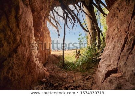 пещере темно туннель туристических горно никто Сток-фото © digoarpi