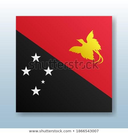 Düğme simge Gine bayrak harita beyaz Stok fotoğraf © mayboro1964