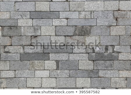 Brown Wavy Paving Slabs. Seamless Tileable Texture. Stock photo © tashatuvango