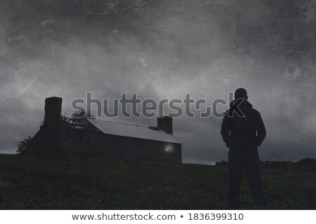 countryside at night Stock photo © tracer