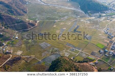Aerial view of paddy fields near Pokhara Stock photo © dutourdumonde
