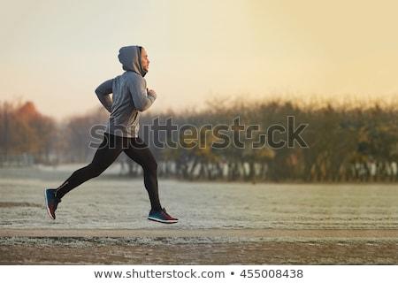 mattina · eseguire · ritratto · giovane · jogging · parco - foto d'archivio © stevanovicigor