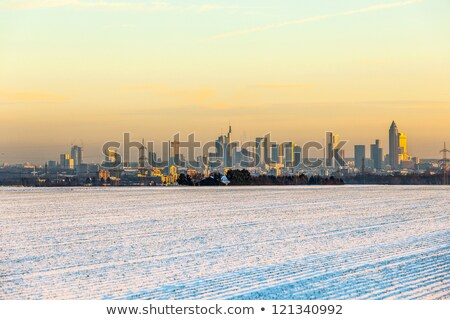 view of Frankfurt am main in late afternoon in Winter Stock photo © meinzahn
