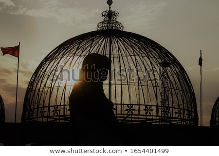 girl and bird cage at sunset stock photo © adrenalina