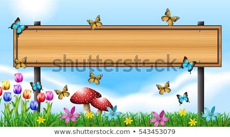 campo · ilustración · papel · diseno · fondo - foto stock © bluering