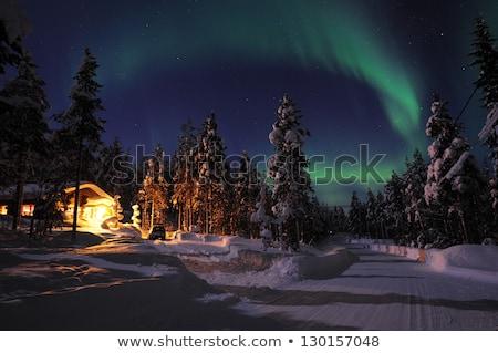 Nieba gwiazdki powyżej górskich zimą idylliczny Zdjęcia stock © stevanovicigor
