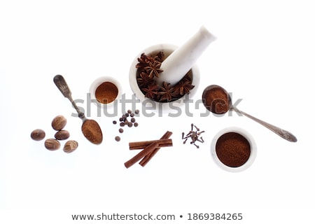 Ground Clove Powder in a Pestle and Mortar Stock photo © monkey_business