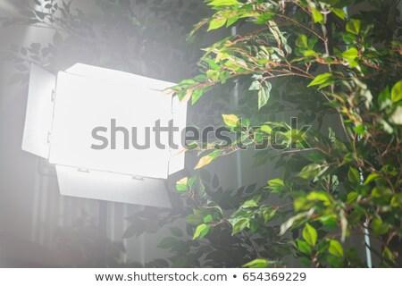 Lumière équipement photo vidéo production mise au point sélective Photo stock © stevanovicigor
