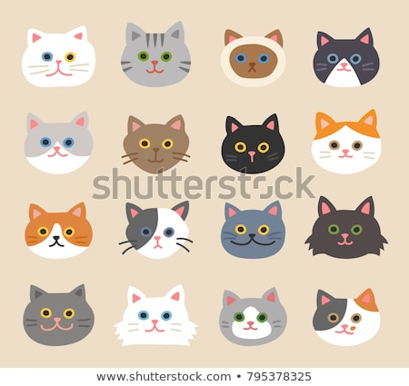 Stock photo: Set of cat icons.Various breed of cats