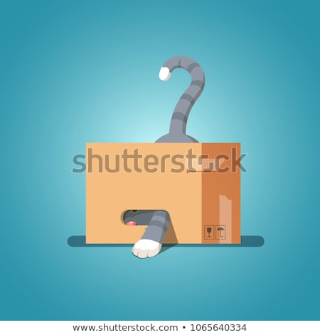 Cat in box isolated. Pet in cardboard box. vector illustration Stock photo © MaryValery