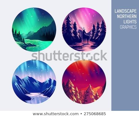 vector set of northern lights backgrounds stock photo © sonya_illustrations