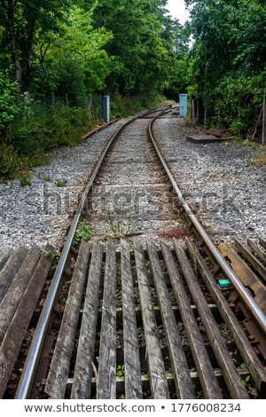 Railroad Tracks Curving Off into the Distance Stock photo © brianguest