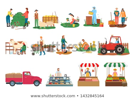 Beekeeper on Land and Tractor Vector Illustration Stock photo © robuart
