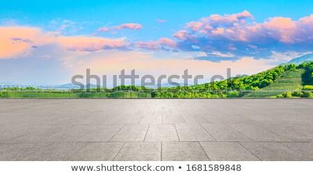 Lege weg park illustratie landschap straat Stockfoto © colematt