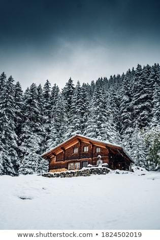 Hagyományos ház Alpok kilátás tavasz idő Stock fotó © boggy