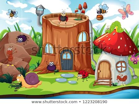 Insect huis illustratie hout vlinder blad Stockfoto © colematt