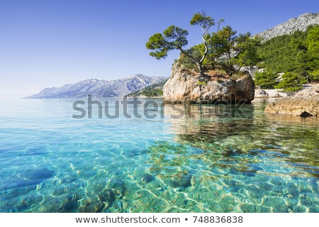 Rocks On Coastline Of Adriatic Sea In Dalmatia Stock photo © rafalstachura