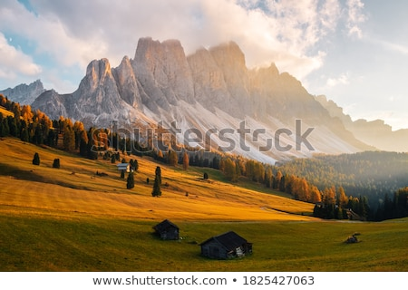 Val Gardena mountains valley with green grass stock photo © frimufilms