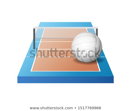 3d volleyball court with grid and white ball Stock photo © MarySan