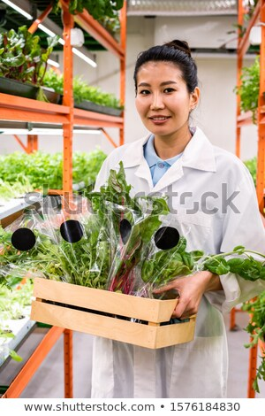 Happy young Asian greenhouse worker in whitecoat carrying organic food Stock photo © pressmaster