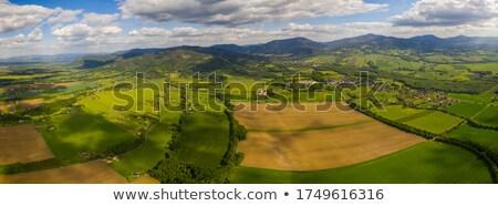 Vektör tv dağ üst ad kel Stok fotoğraf © pavelmidi