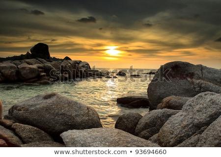 praia · penhasco · alga · ver · Irlanda - foto stock © morrbyte