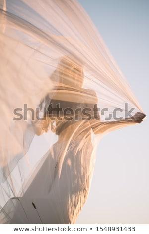 Bella donna velo rosa bella mano Foto d'archivio © pzaxe