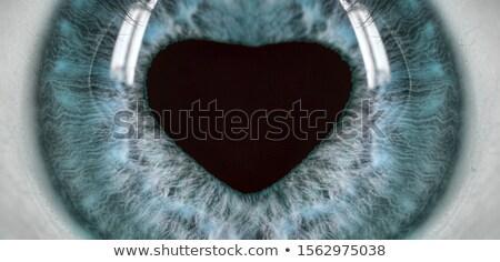 человека глаза сердце Iris Сток-фото © PiXXart