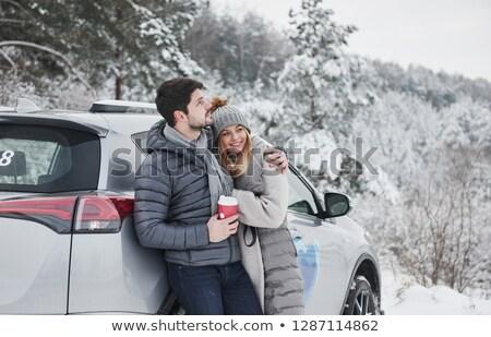 Em pé carros inverno estrada natureza rua Foto stock © samsem