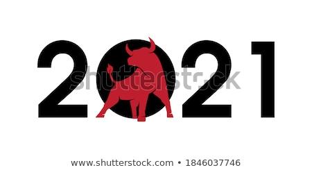 Head of a White Bull Stock photo © rhamm
