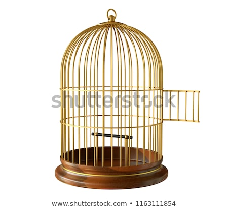 Open Bird Cage Stock photo © Lightsource
