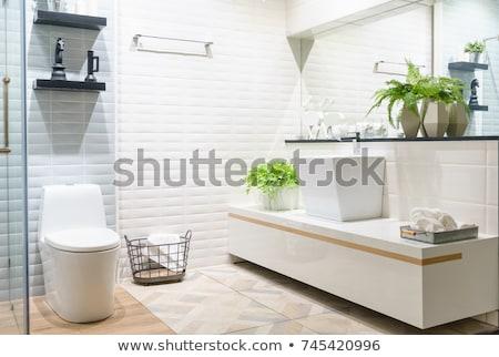 белый · плиточные · туалет · фотография · туалет · зеркало - Сток-фото © backyardproductions