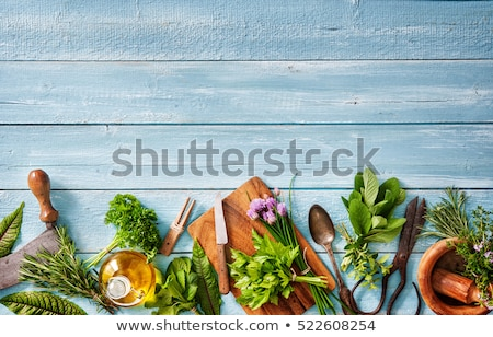 Bundle of fresh Kitchen Herbs Stock photo © nailiaschwarz