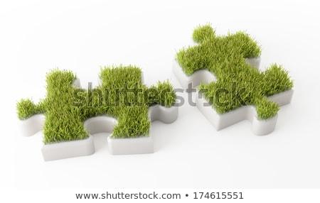 セキュリティ 緑 パズルのピース アイコン 南京錠 ストックフォト © tashatuvango