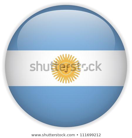 набор Кнопки Аргентина красочный Сток-фото © flogel