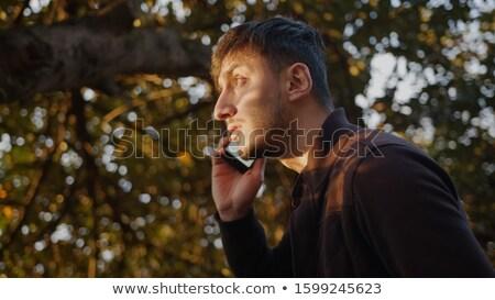 Rozmowa telefoniczna lesie czerwony telefonu obfity Zdjęcia stock © gophoto
