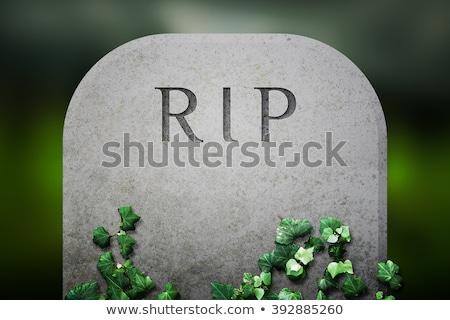 сумерки старые кладбище трава пейзаж крест Сток-фото © actionsports