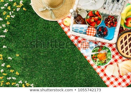 voedsel · picknick · uit · hout · landschap · oranje - stockfoto © epstock