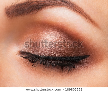 Closeup of womanish eye with neutral makeup Stock photo © vlad_star