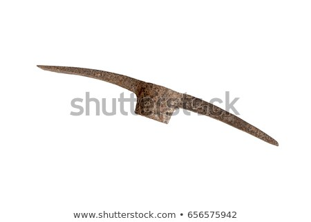 ржавые · лопатой · старые · природы · вокруг · Daisy - Сток-фото © michaklootwijk