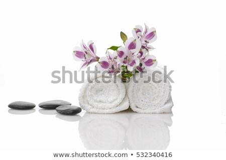 Zen ambiance Stock photo © tilo