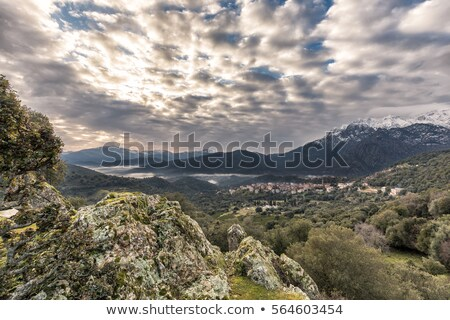 The village of Moltifao in the Balagne region of Corsica Stock photo © Joningall