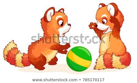 Red panda playing Stock photo © Juhku