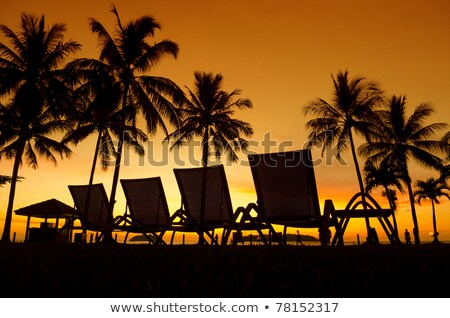 Row deckchairs on beach at sunset Stock photo © nessokv