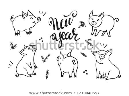болван свинья изолированный белый дизайна Сток-фото © netkov1