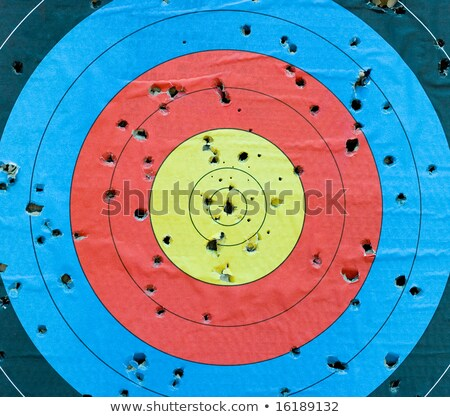 Standard targets are marked with 10 evenly spaced concentric rings photo Stock photo © Hermione