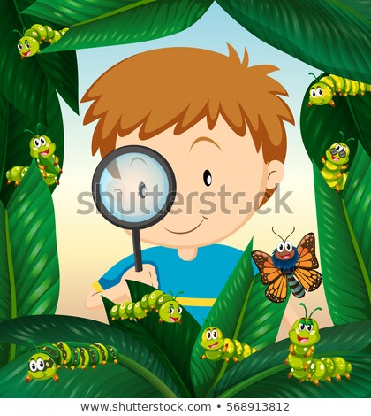 Boy observing insect life on the leaves Stock photo © bluering