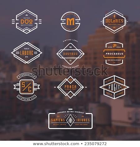 resumen · vibrante · diseño · de · logotipo · diseno · color · publicidad - foto stock © sarts