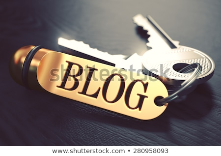 Blog Key. 3D Stock photo © tashatuvango