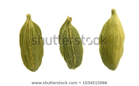Cardamom pods and grounded Stock photo © Hofmeester
